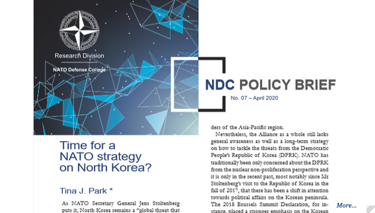 NDC Policy Brief 7-20