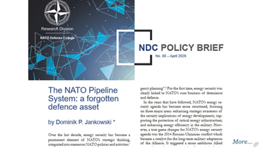 NDC Policy Brief 8-20