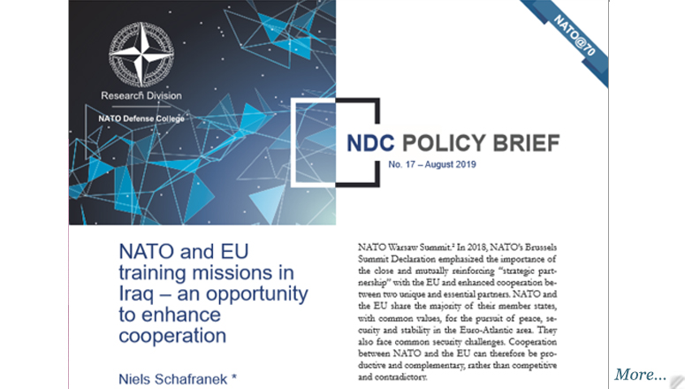 NDC Policy Brief 17-19