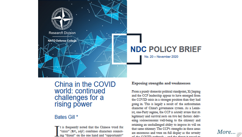 NDC Policy Brief 20-20